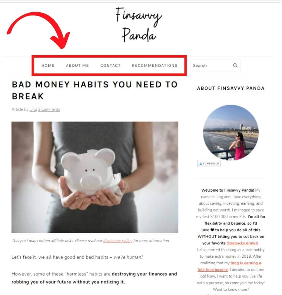 what is a page on blog website