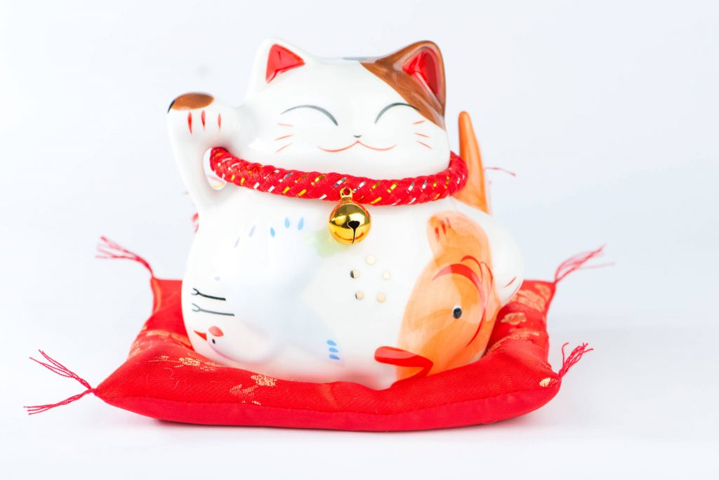 what should I blog about lucky cat